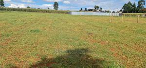 1⁄4 Plot for Sale in Illula Eldoret   Land & Plots For Sale for sale in Ainabkoi, Illula