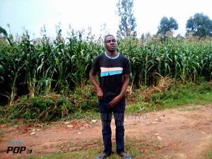 Personal Driver Job | Driver CVs for sale in Kakamega, Likuyani