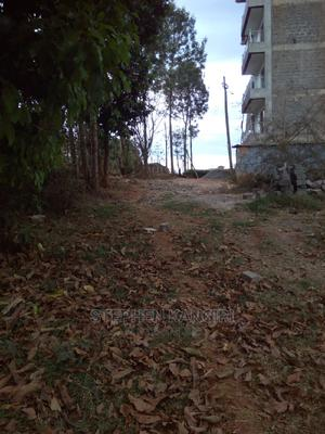 Plot for Lease 100×100   Land & Plots for Rent for sale in Kiambaa, Muchatha