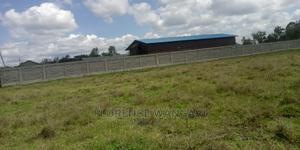 50*100 Plots for Sale Along Kangudo Road | Land & Plots For Sale for sale in Kamulu, Malaa