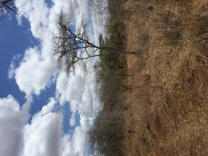 20 Acres for Sale 2km From the Tarmac Road | Land & Plots For Sale for sale in Kajiado, Matapato