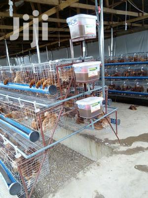 Poultry Chicken Cages | Farm Machinery & Equipment for sale in Nairobi, Kahawa West