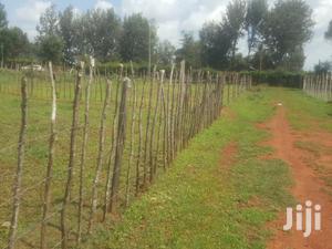 Affordable 1/4 Plot for Sale in Chepkanga Eldoret | Land & Plots For Sale for sale in Uasin Gishu, Eldoret CBD