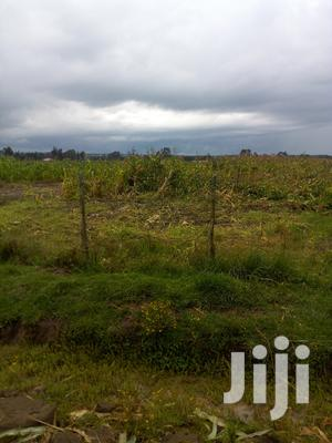 Land On Sale At Githabai | Land & Plots For Sale for sale in Nyandarua, Nyakio