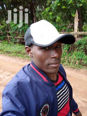 Travel And Work CV | Travel & Tourism CVs for sale in Bomet, Silibwet Township