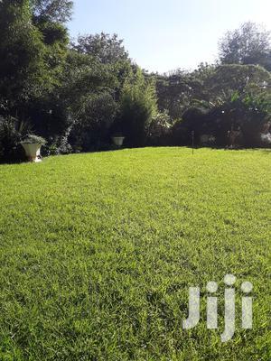 To Work In The Garden | Gardening & Landscaping CVs for sale in Nairobi, Westlands