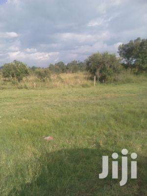 2acres for Sale | Land & Plots For Sale for sale in Nyahururu, Marmanet