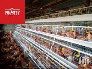 Chicken Cages For Layers | Farm Machinery & Equipment for sale in Nairobi, Kahawa