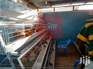 Poultry Chicken Cages And Equipment | Farm Machinery & Equipment for sale in Nairobi, Kahawa West
