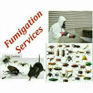 Pest Control Services   Cleaning Services for sale in Kisumu, Kisumu Central