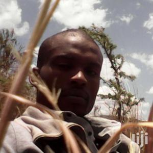 Personal Driver | Driver CVs for sale in Nairobi, Makadara