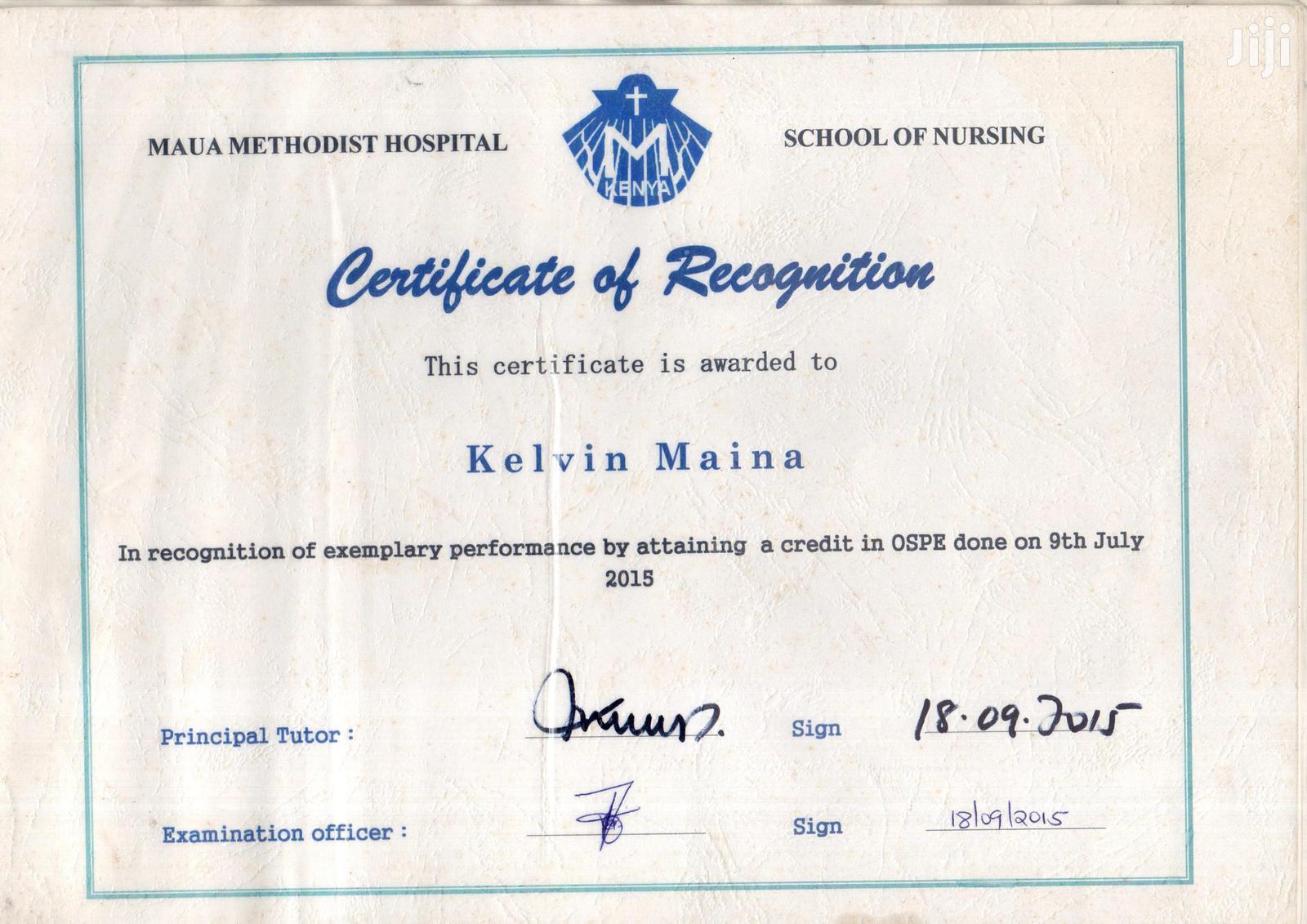 Community Health Nurse   Healthcare & Nursing CVs for sale in Weru, Nyandarua, Kenya