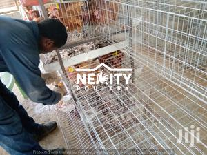 Electrogalvanised Chicken Cages | Farm Machinery & Equipment for sale in Nairobi, Nairobi Central