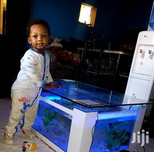 Coffee Table Aquarium   Fish for sale in Nairobi, Kilimani
