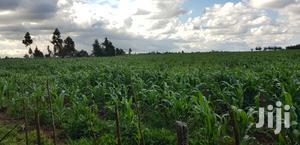 Prime 8 Acres Land for Sale in Koshin Near Kapjagir Eldoret   Land & Plots For Sale for sale in Uasin Gishu, Eldoret CBD