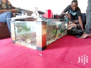 Coffee Table Aquarium   Fish for sale in Nairobi, Huruma