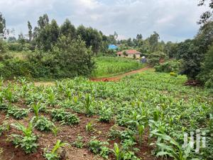 Residential Plot For Sale In Muguga Acre One (Acre Imwe) | Land & Plots For Sale for sale in Kikuyu, Muguga